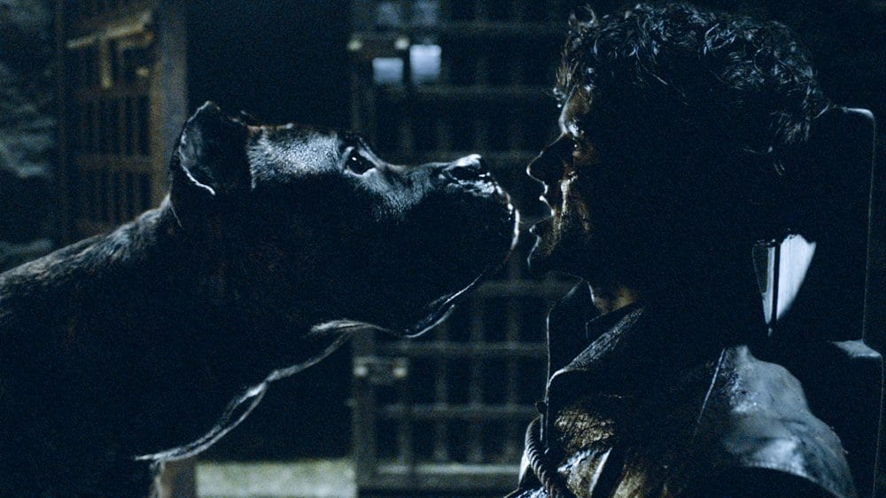 Ramsay Bolton (Iwan Rheon) is fed to his hounds by Sansa Stark (Sophie Turner) after losing the