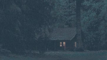 The Log Lady's cabin at night with one light on