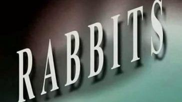 Rabbits short film title