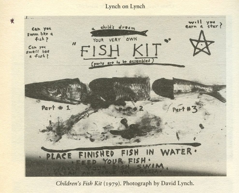 fish kit a photo by David Lynch from Lynch on Lynch book