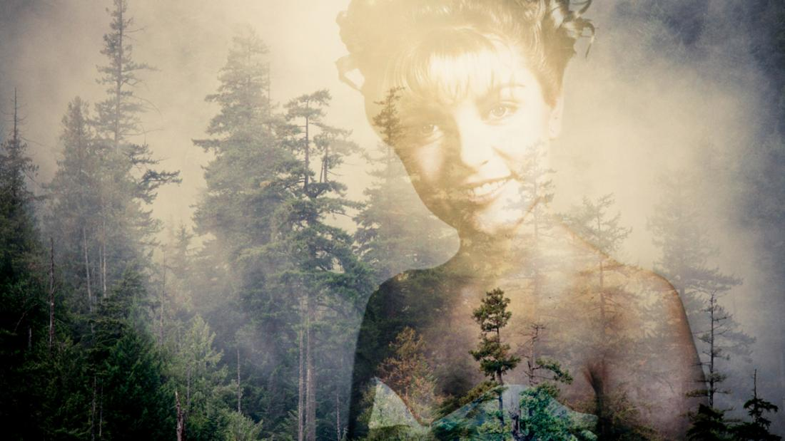 Twin Peaks laura palmer title image