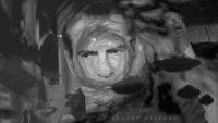 Nixon cover art