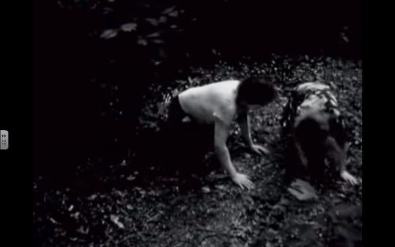 The Grandmother by David Lynch screenshot