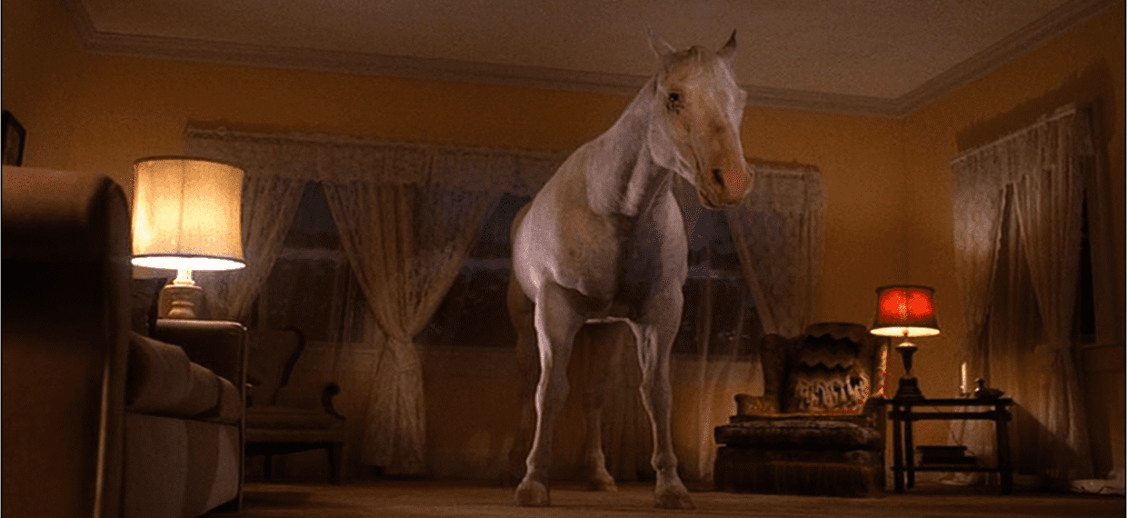 white horse stands in the palmer living room