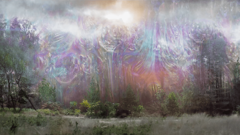 The Shimmer in Annihilation