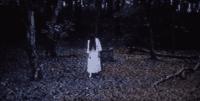 Sadako leaves the well