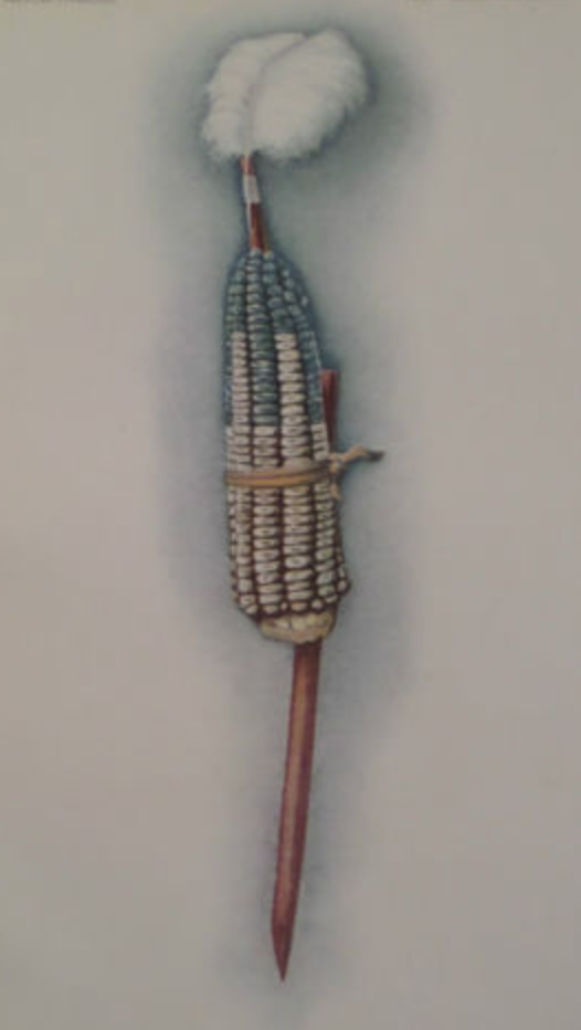 "An Illustration of a Pawnee object representing the goddess Atira in the Pawnee Hako ceremony, 1912. ""The corn is painted so the Rainstorm, the Thunder, the Lightning and the Wind are represented."""
