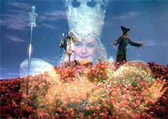 The good witch is superimposed over a field of poppies in wizard of oz