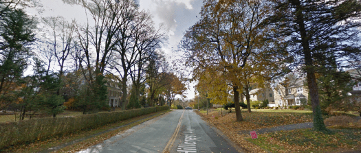 wide angle view of tree-lined street with stately homes