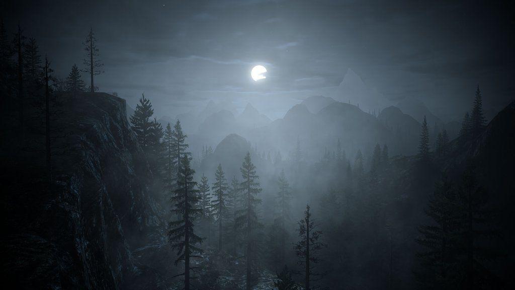 Bright Falls woods at night