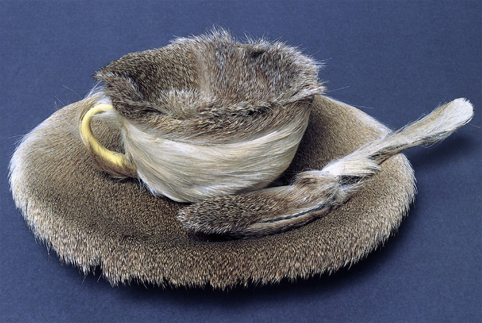 Oppenheim's fur-covered teacup