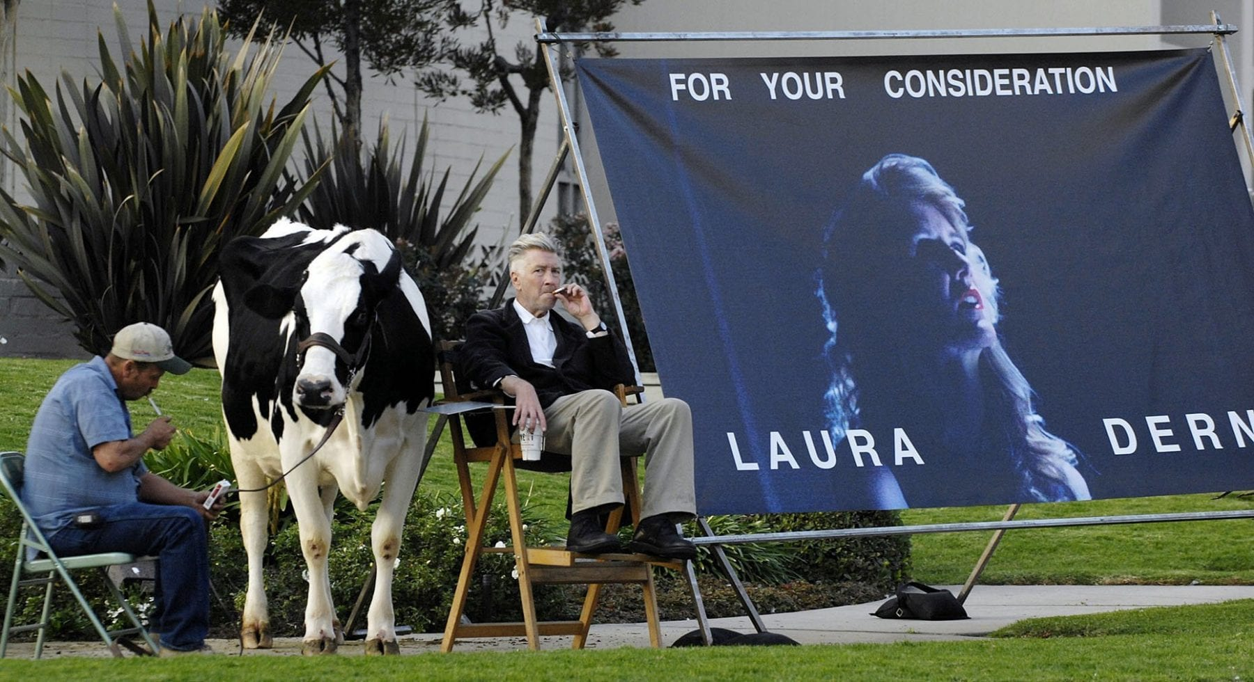David Lycnh campaigns for Laura Dern with a cow