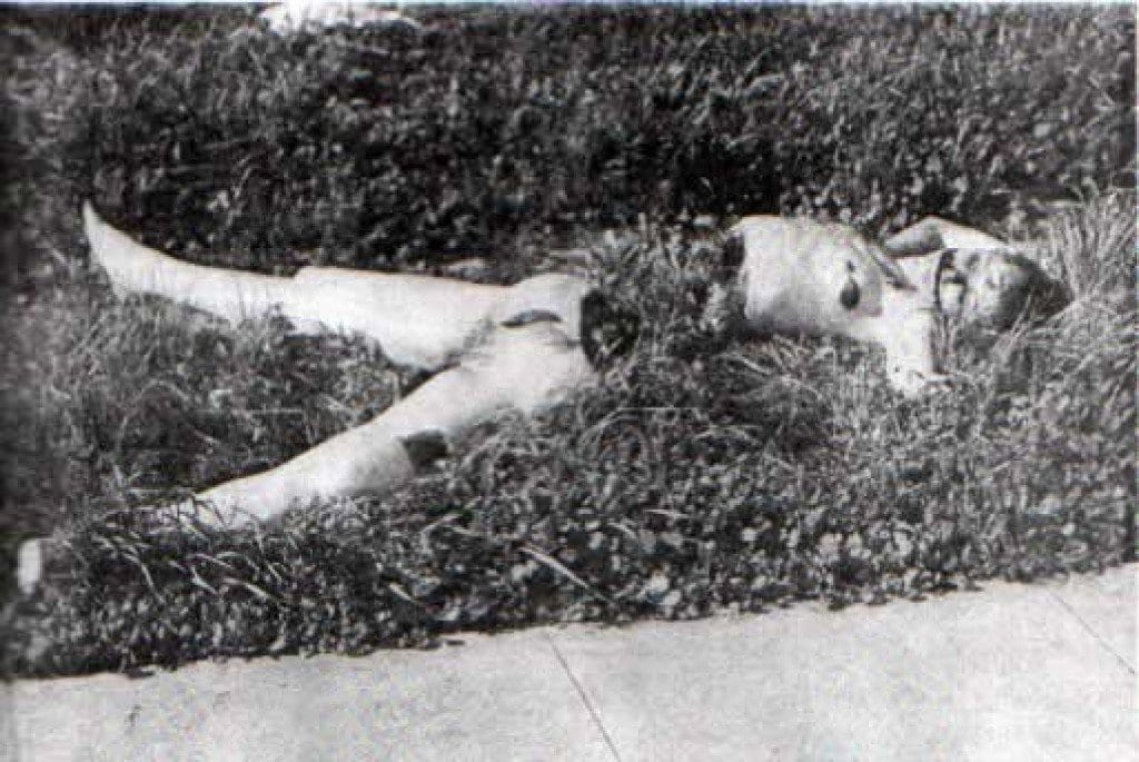 A photo of the crime scene where Elizabeth Short was discovered