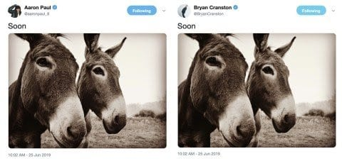Bryan Cranston and Jesse Pinkman tweet 'Soon' and an image of two mules