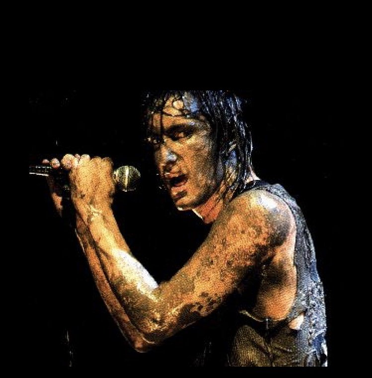 A post-mud Trent Reznor sings intensely during Nine Inch Nail's set.