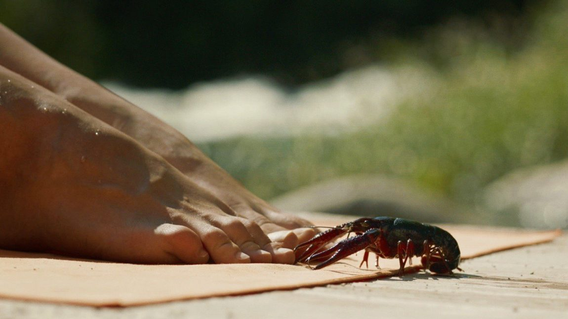 A crawfish at the foot of a woman