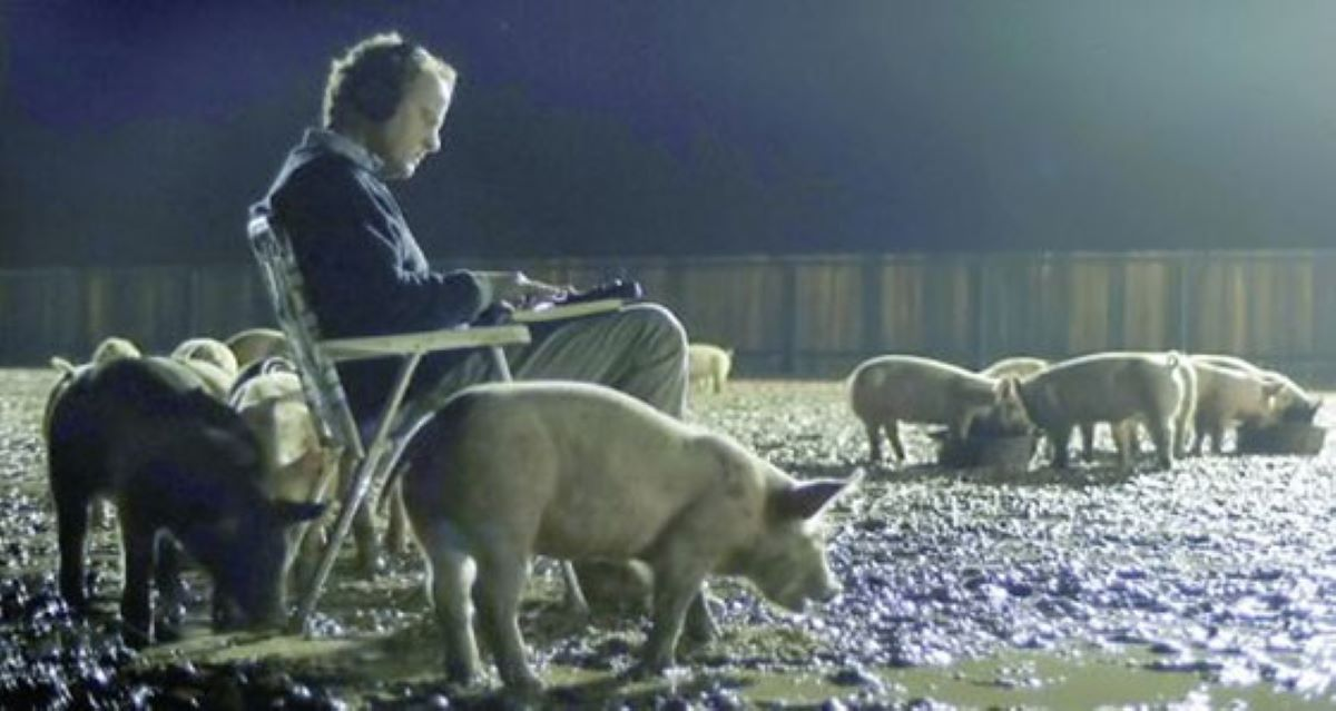 A mysterious pig farmer listens to the sounds he samples from the world in Upstream Color.