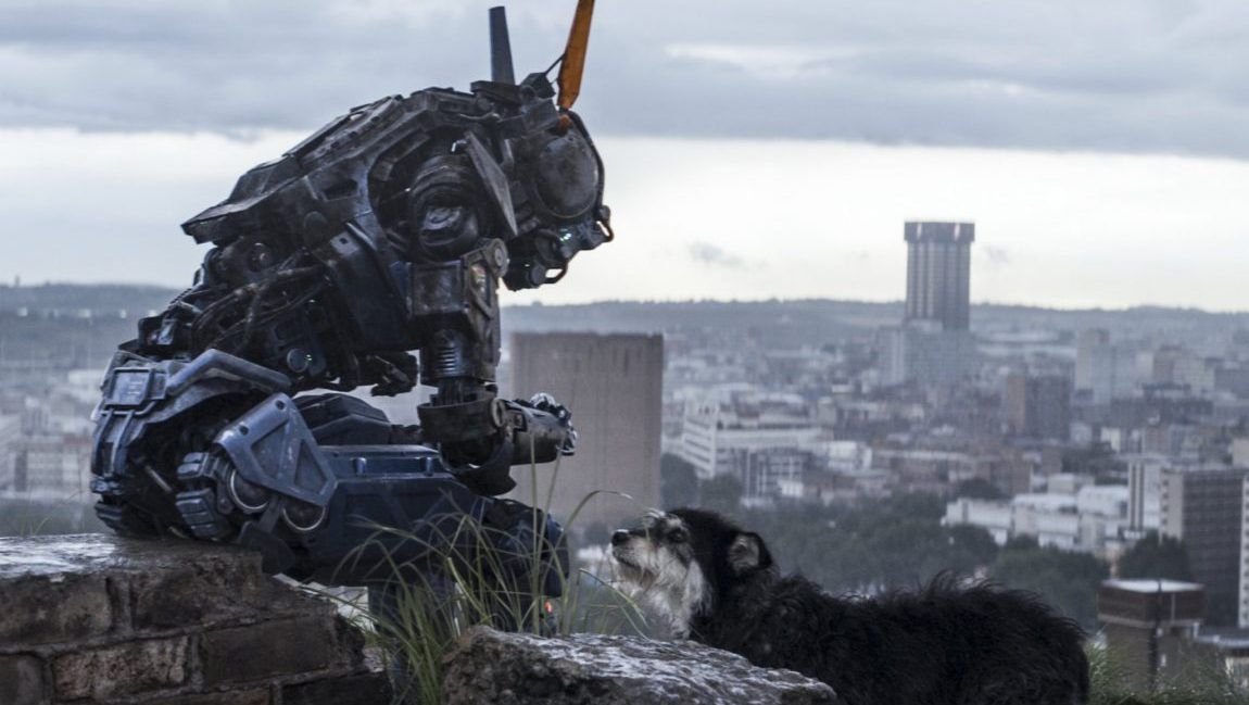 Chappie sits alone comforted only by a stray dog