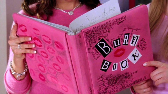 A close up of the hot pink Burn Book from Mean Girls