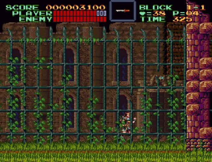 From behind large ivy laced gates, Simon enters the Castlevania property, featuring a doorway with a bat with glowing eyes above it.