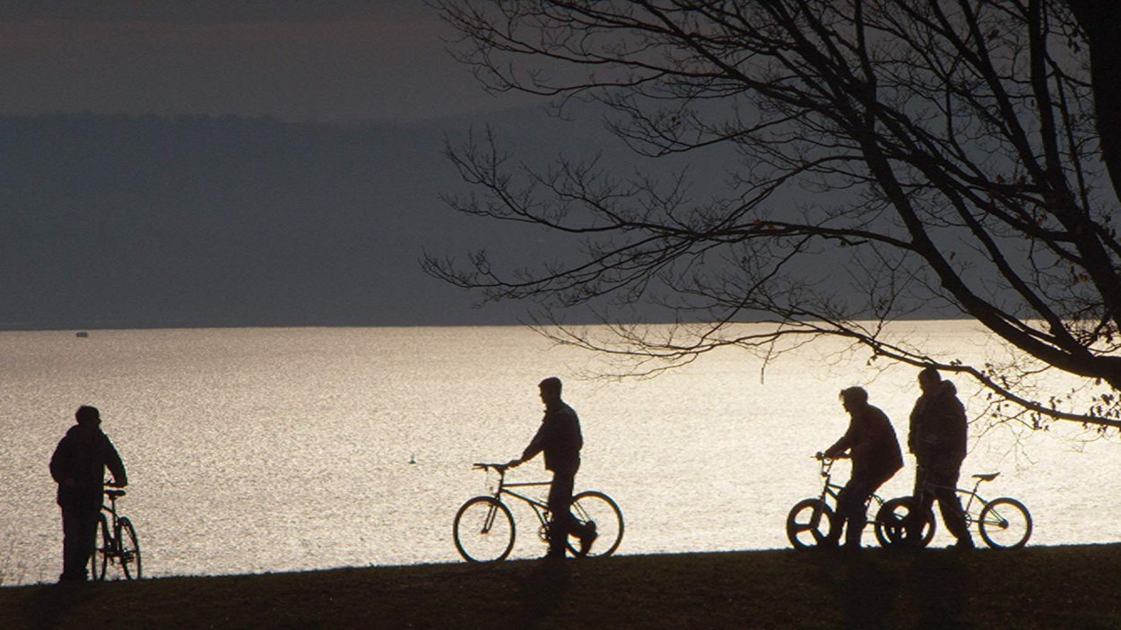 The film's characters stand silhouetted on the edge of a lake with their bikes