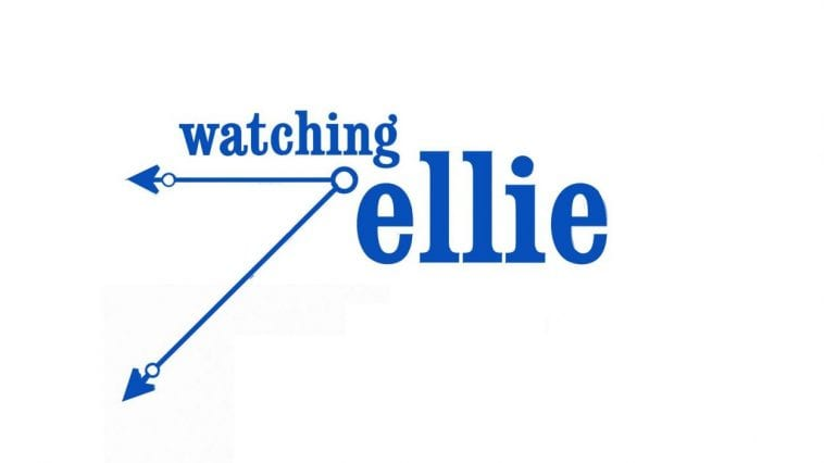 Watching Ellie was the first show of Julia Louis-Dreyfus after Seinfeld