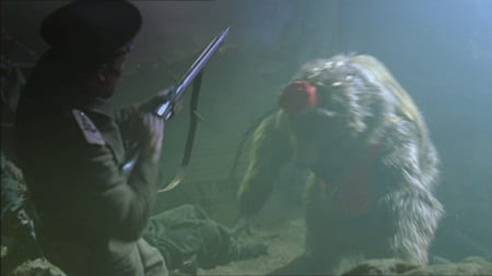a bear with a fez fights a Russian soldier