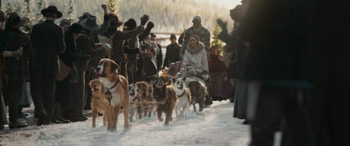 Buck and the mail sled are cheered on their arrival into town.