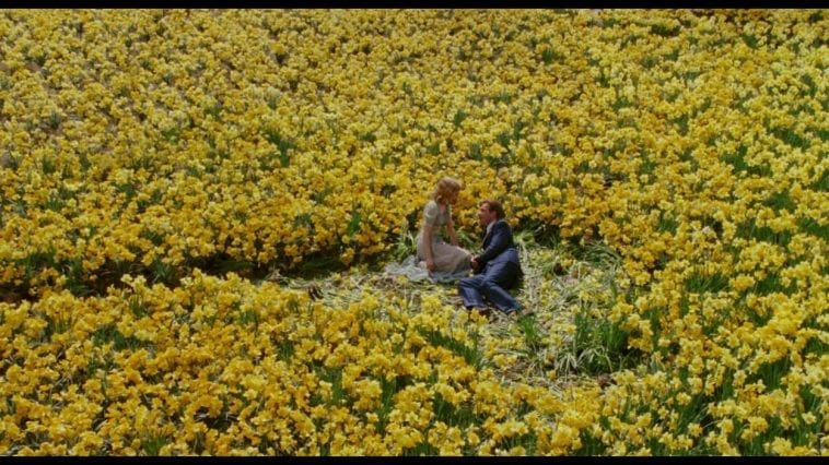 The field of daffodils Edward planted for Sandra in Big Fish
