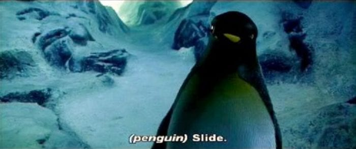 "A talking penguin in an ice cave says, ""Slide."""