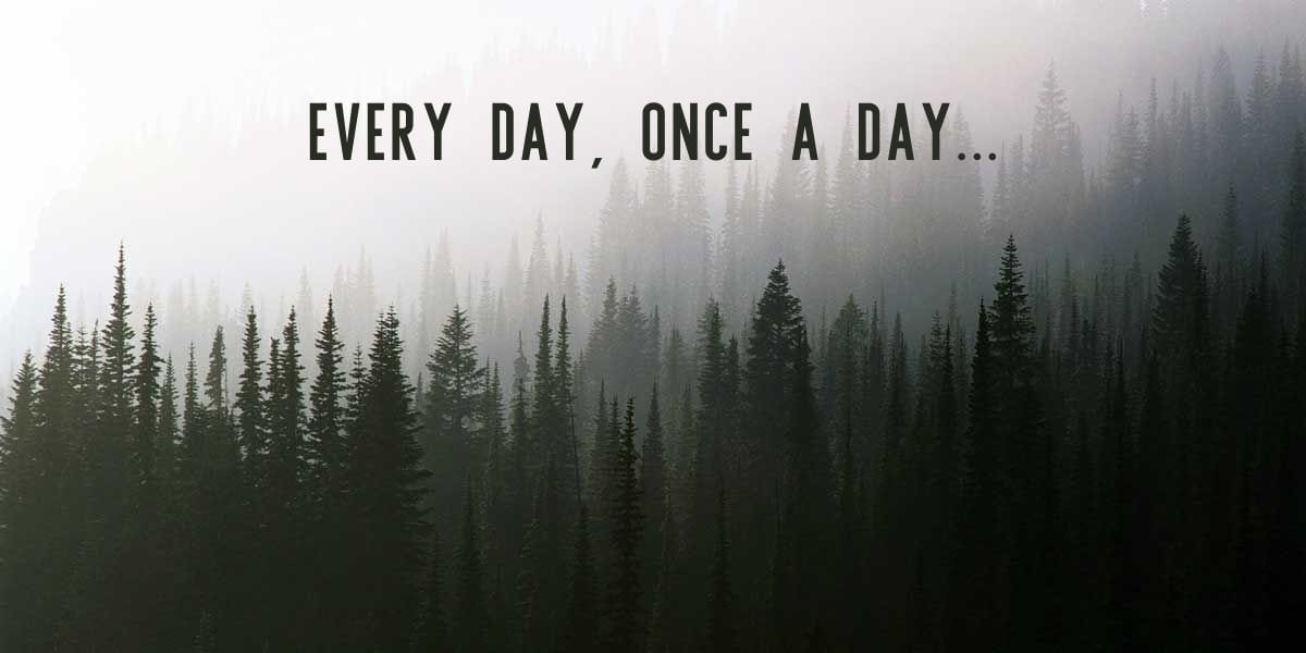 fir trees in the mist with slogan, every day once a day