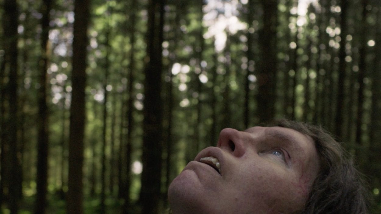 Eva Melander as Tina, looks up at the forest canopy