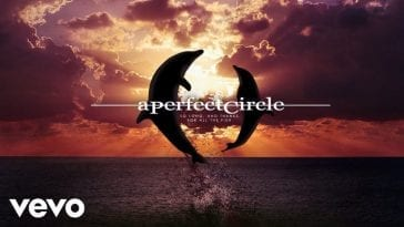 Dolphins jump in a shot for A Perfect Circle