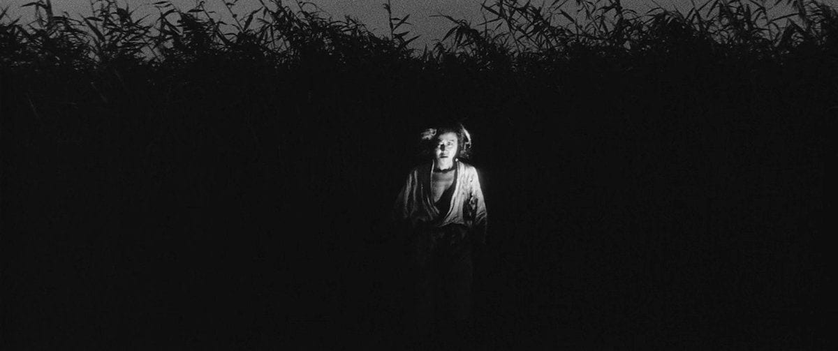The mother hides in the shadows of the grass at night, looking toward the screen.