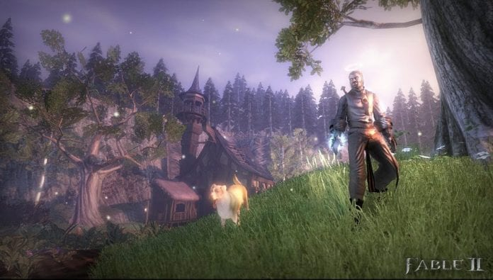 A Hero and his dog in Fable