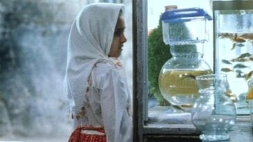 Razieh looks at goldfish in a store window.