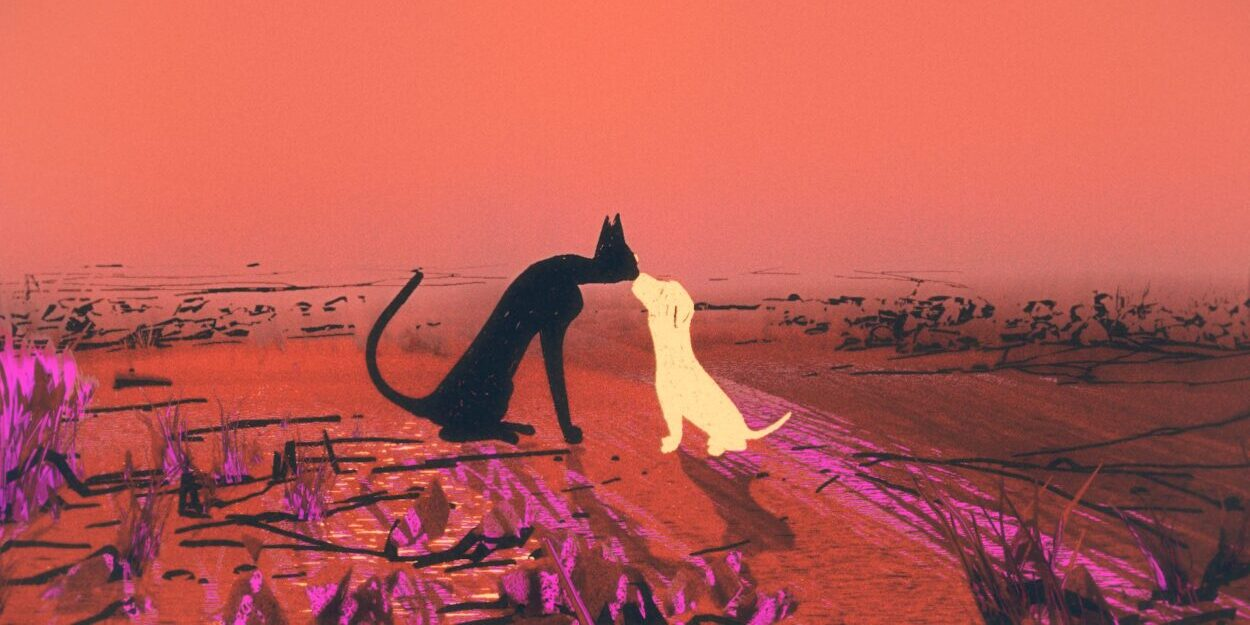 Groove Armada video love story between cat and dog