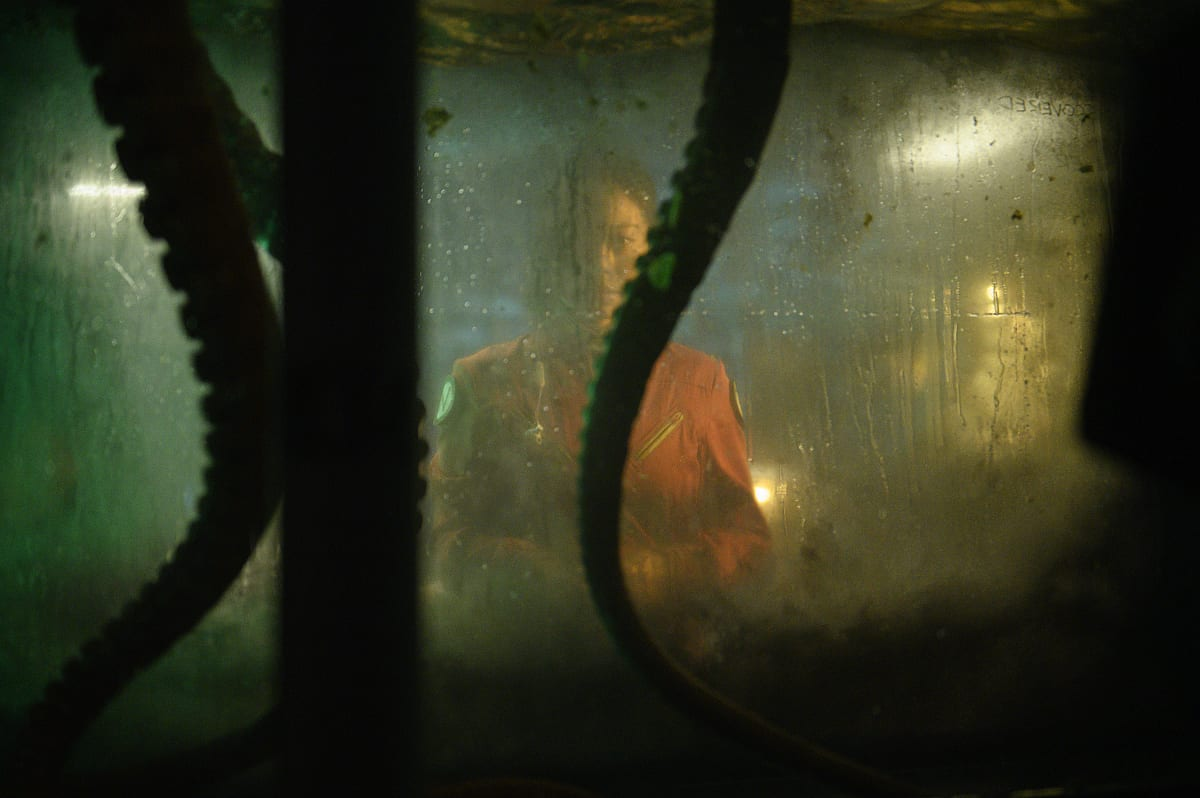 Tentacles hang down in a tank, while the crew looks on