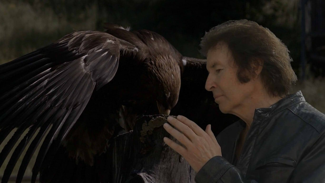 Shot from Twisted Pair. Breen, clad in a leather jacket, strokes the keyed-in stock image of an eagle.
