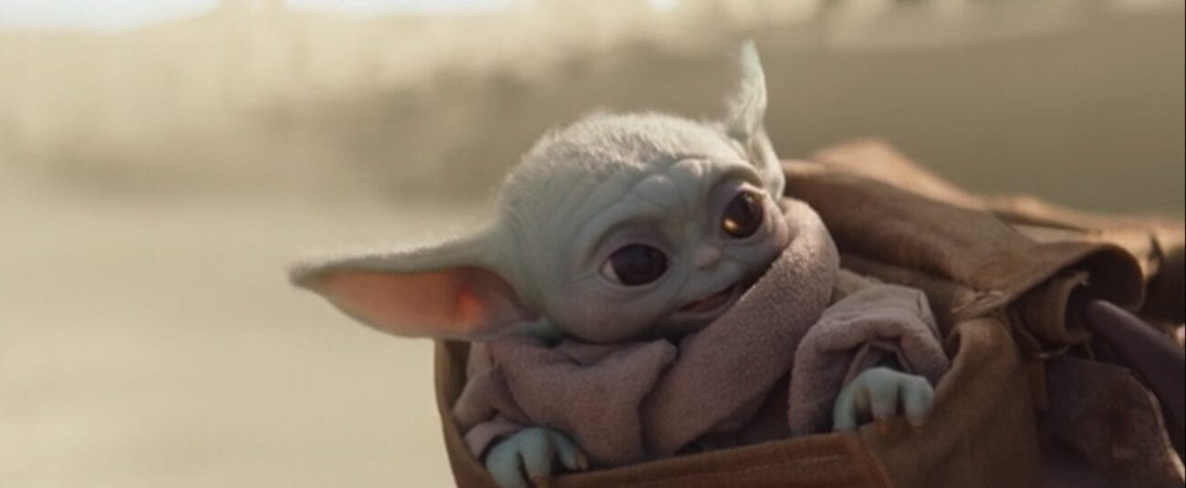 The Child (Baby Yoda) enjoys a speeder bike ride, while sitting in his pouch