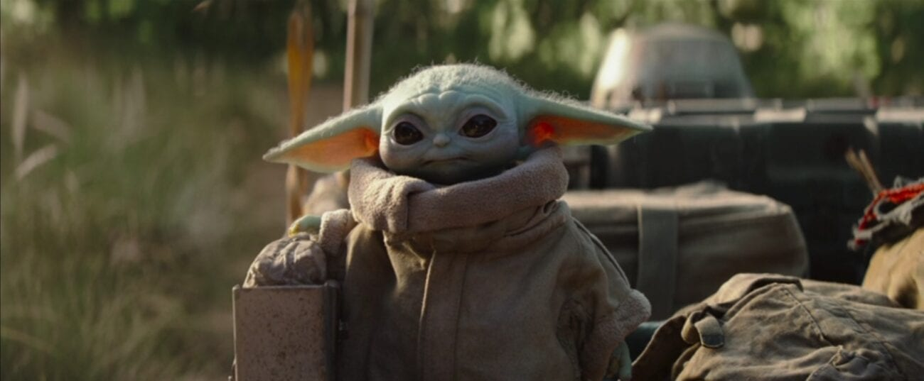 The Child, aka Baby Yoda, looks on