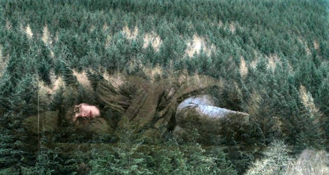 The Woman sleeps with the forest superimposed over her image