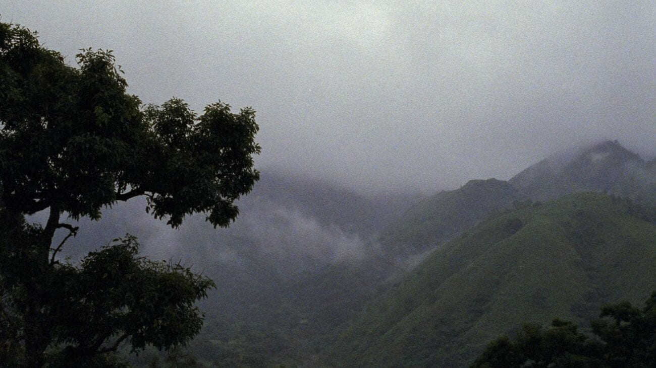 A long shot of mountains in Argentina covered by fog and storm clouds, while a tree appears in the foreground of the shot on the left.