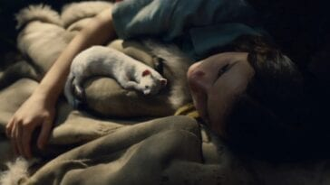 Lyra lies on a blanket in filtered sunlight with Pan as a ferret curled up beside her