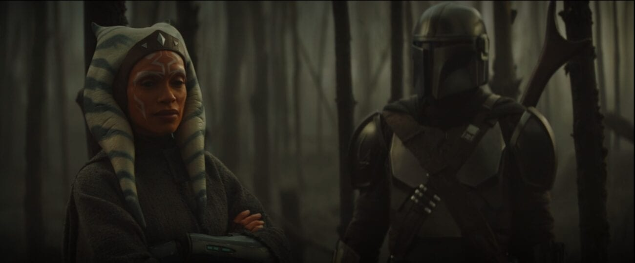 Mando and Ahsoka stand in a burned forest, discussing The Child's future