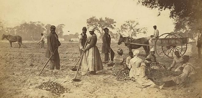 A sepia-toned photograph of a plantation with a horse-drawn plow on the right in the background. Three enslaved men and one enslaved woman are tillling the soil in the center, an enslaved man drives a wagon, and several other enslaved people are seated to the right going through some bushels