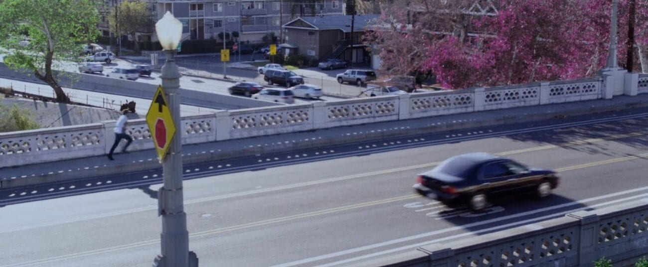 Brendan runs over a bridge on foot where a tree shows purple foliage as cars pass by on the road
