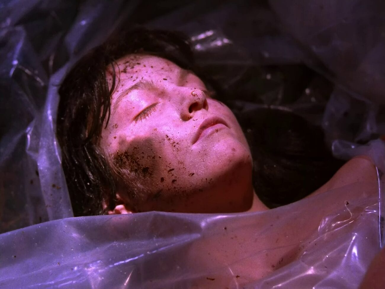Maddy dead wrapped in plastic