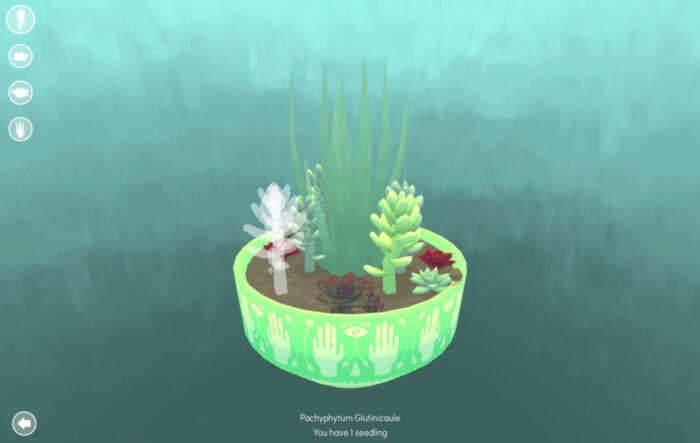 a pot of succulents floats in the centre of the screen in this feel-good indie game