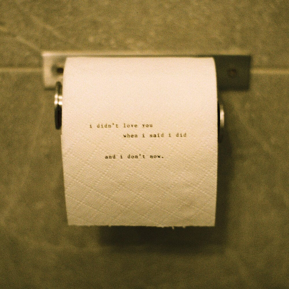 """A roll of toilet paper on the wall with the words """"i didn't love you when i said i did and i don't now"""" written on it in small text, fully lowercase"""